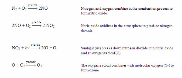 Nitrogen Cycle - microbewiki