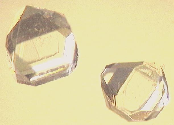 File:Xylitol crystals.jpg