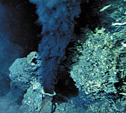 Deep sea producers use chemosynthesis
