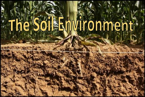 Soil environment microbewiki for Soil environment
