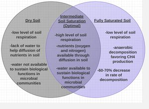 The effects of global climate change on soil respiration microbewiki 2 venn diagram illustrating the effects of soil moisture on microbial function and soil respiration ccuart Gallery