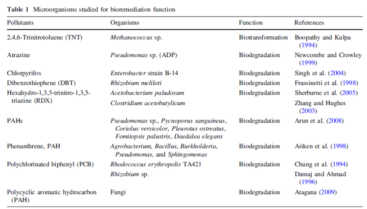 difference between bioremediation and bioaugmentation