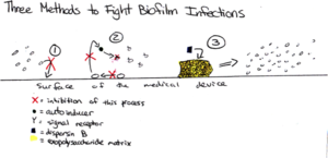 Biofilms in the Medical Field - microbewiki