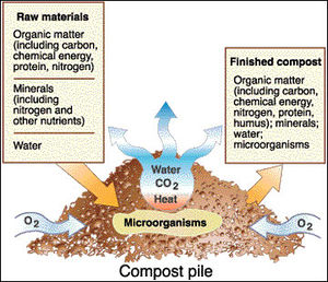 microbes and land use change - microbewiki composting diagram