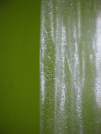Vinyl Shower Curtain This Type Of Is Known To Accumulate Biofilms The Fastest In Comparison Nylon Curtains And Glass Doors