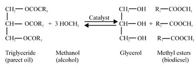 Biodiesel from Algae Oil - microbewiki