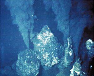 Deep sea vent - microbewiki