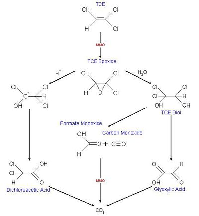 Detoxification of groundwater furthermore Misc as well Onof2 moreover Psu22 besides Story. on php diagram